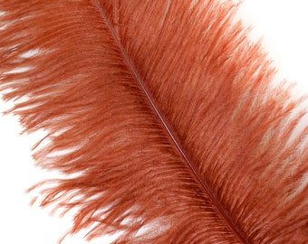 """COPPER 25 Ostrich Feathers 17""""- 20"""" - 25pc/pkg - Perfect for Feather Centerpieces,Party Decor,Millinery & Carnival Costumes ZUCKER®"""