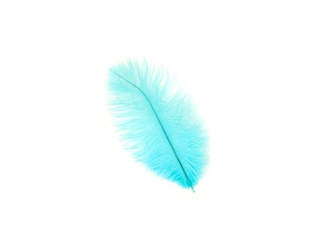 "12 LT. TURQUOISE Ostrich Feathers 9-12"" Perfect for Feather Small Feather Centerpieces, Party Decor, Millinery & Costume Design ZUCKER®"