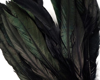 "8-10"" Rooster Coque Tail Feathers, Black Iridescent Dyed Rooster Feathers, Long Rooster Feathers 25 pieces Jewelry & Art Supply ZUCKER®"