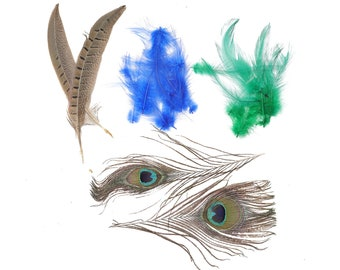 Peacock - Pheasant - Hackle Mix - Kelly - Natural