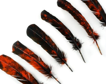 LEFT SIDE 25pc/pkg Orange & Black Tie-Dyed Turkey Quill Value Pack - For Arts and Crafts, Millinery, Carnival and Costume Design ZUCKER®