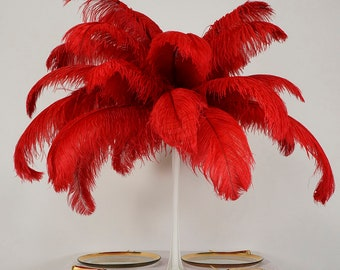 "Large Ostrich Feathers 6 Pieces 17-25"" Prime Ostrich Femina Wing Plumes, RED, Wedding Centerpieces, Carnival Feathers ZUCKER® USA"
