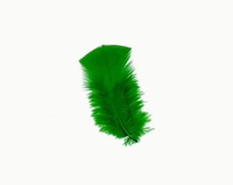 Turkey Feathers, Kelly Green Loose Turkey Plumage Feathers, Short T-Base Body Feathers for Craft and Fly Fishing Supply ZUCKER®