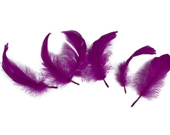 "Goose Nagoire Feathers, 4-6"" Very Berry Loose Goose Nagoire Feathers, Small Feathers, Arts and Craft Supplies ZUCKER®"