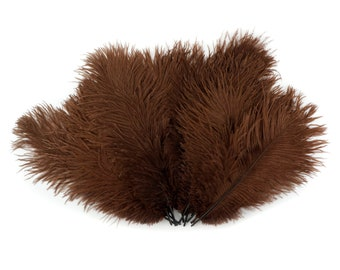 "Ostrich Feathers 9-12"" Brown, Ostrich Drabs, Centerpiece Floral Supplies, Carnival & Costume Feathers ZUCKER®Dyed and Sanitized USA"