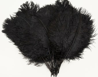 """Black Ostrich Feather Tips, 15-18"""" Ostrich Tails 25 Pieces for Millinery & Floral Design, DIY Costume, Carnival, Mardi Gras ZUCKER®"""