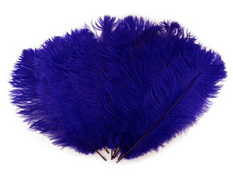 """Ostrich Feathers 13-16"""" REGAL - For Feather Centerpieces,Party Decor,Millinery,Carnival,Fashion and Costume Design ZUCKER®"""