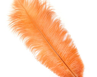 """CINNAMON Bulk 13-16"""" Ostrich Feathers 1/4LB - For Feather Centerpieces,Party Decor,Millinery,Carnival,Fashion and Costume Design ZUCKER®"""