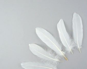 """Goose Satinette Feathers, 4-6"""" White Loose Goose Feathers, Small Feathers, Art and Craft Supplies ZUCKER®"""