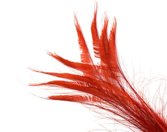 "Bleach Dyed Peacock Sword Feathers 10 to 100 Pieces 15-25"" RED - Floral Decor, Millinery, Jewelry Design ZUCKER® Dyed & Sanitized in USA"