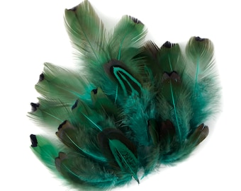 Pheasant Feathers, Dyed Aqua Heart Pheasant Plumage, Loose Short Natural Feathers for DIY Jewelry, Crafting & Fly Tying  ZUCKER®