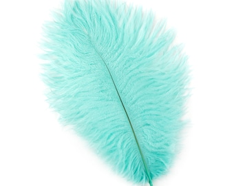 "12 MINT Ostrich Feathers 9-12"" Perfect for Feather Small Feather Centerpieces, Party Decor, Millinery & Costume Design ZUCKER®"