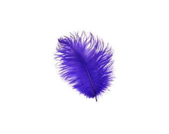 "12 REGAL 4-6"" Ostrich Feathers Perfect for Floral Bouquets & Small Feather Centerpieces, Party Decor, Millinery and Costume Design ZUCKER®"