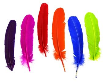 25pc/pkg Dyed Turkey Quill Mix - Bright Dyed Turkey Quill Mix for Arts & Crafts, Millinery, Carnival and Costume Design ZUCKER™