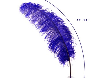 "Ostrich Feathers, Regal Ostrich Feather Spads 18-24"", Centerpiece Floral Supplies, Carnival & Costume Feathers ZUCKER®"