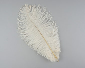 """IVORY Bulk 9-12"""" Ostrich Feathers 1/4LB - For Feather Centerpieces,Party Decor,Millinery,Carnival,Fashion & Costume Design ZUCKER®"""