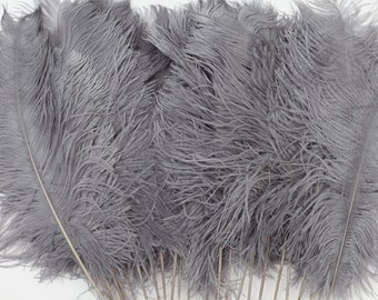 """Silver Ostrich Feather Tips, 15-18"""" Ostrich Tails 25 Pieces for Millinery & Floral Design, DIY Costume, Carnival, Mardi Gras ZUCKER®"""