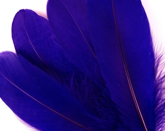 "BULK 6-8"" REGAL Loose Dyed Goose Pallet Feathers - For Arts, Crafts, Dream Catcher, Millinery, Carnival, Costume & Cosplay Design ZUCKER®"