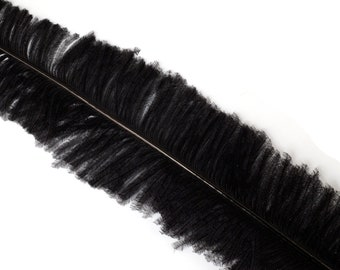 "Ostrich Nandu Feathers, Black Ostrich Feather Nandus 13-24"", Wholesale Carnival & Costume Feathers ZUCKER®"
