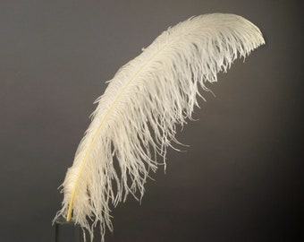 """BEIGE 25 Large Ostrich Feathers 17-25"""" 25pc/pkg - For Feather Centerpieces, Party Decor, Millinery , Carnival , Costume ZUCKER®"""