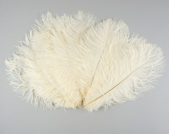 "Ostrich Feathers 9-12"" IVORY, Ostrich Drabs, Centerpiece Floral Supplies, Carnival & Costume Feathers ZUCKER®Dyed and Sanitized USA"