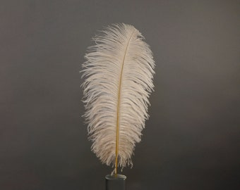 "12 BEIGE 17""+ Ostrich Feathers 1DZ - Perfect for Large Feather Centerpieces, Party Decor, Millinery, Carnival & Costume Design ZUCKER®"