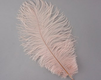 "12 CHAMPAGNE 13-16"" Ostrich Feathers - Perfect for Medium Feather Centerpieces & Bouquets, Party Decor, Millinery and Costume Design ZUCKER™"