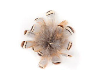 Natural Loose Partridge Plumage, 40-60 PCS Partridge Feathers 1 to 2.5 inches For Fly Tying & Art and Craft Supply ZUCKER®