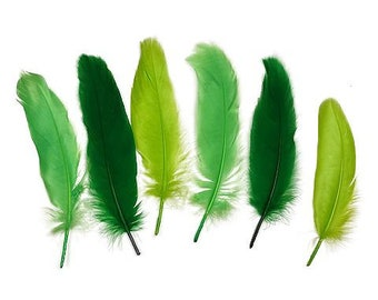 "Goose Satinette Feathers, 4-6"" Green Grass Mix Loose Goose Feathers, Assorted Green Feathers, Small Feathers, Art and Craft Supplies ZUCKER®"