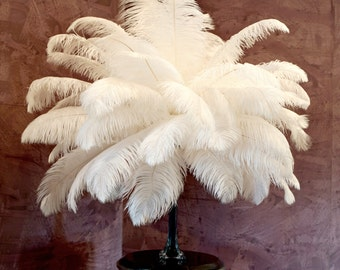 "25 LARGE Ostrich Feathers 17-25"" 25pc/pkg - Perfect for LARGE Feather Centerpieces, Party Decor, Millinery , Carnival , Costume ZUCKER™"