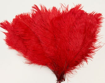"""Red Ostrich Feather Tips, 15-18"""" Ostrich Tails 25 Pieces for Millinery & Floral Design, DIY Costume, Carnival, Mardi Gras ZUCKER®"""