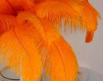 """Large Ostrich Feathers 17-25"""", 1 to 25 Pieces, MANGO Orange, Wedding Centerpieces, Millinery, Renaissance Festival, Carnival Feather ZUCKER®"""