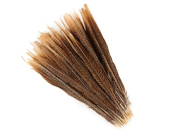 """Natural Tail Feathers - Long Golden Pheasant 14-16"""" - Natural Color Golden Pheasant Tail Feathers ZUCKER®"""