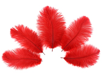 """Bulk Ostrich Feathers 4-6"""" RED, Mini Ostrich Drabs, Bouquets, Boutonnieres, Small Centerpieces ZUCKER® Dyed and Sanitized USA"""