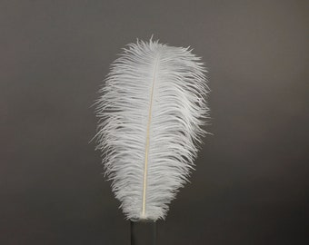 "12 WHITE 17""+ Ostrich Feathers 1DZ - Perfect for Large Feather Centerpieces, Party Decor, Millinery, Carnival & Costume Design ZUCKER®"
