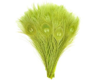 "LIME 100pcs Bulk 8-15"" Bleach Dyed Peacock Tail Feathers - For Arts & Crafts, Floral Decor, Millinery and Jewelry Design ZUCKER®"