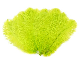 """Ostrich Feathers 13-16"""" LIME - For Feather Centerpieces,Party Decor,Millinery,Carnival,Fashion and Costume Design ZUCKER®"""