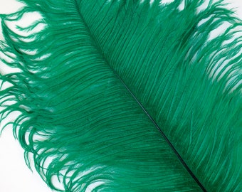 """EMERALD 25 Ostrich Feathers 17""""- 20"""" - 25pc/pkg - Perfect for Feather Centerpieces,Party Decor,Millinery & Carnival Costumes ZUCKER®"""