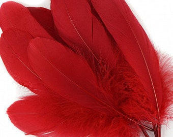 "BULK 6-8"" RED Loose Dyed Goose Pallet Feathers - For Arts ,Crafts, Dream Catchers, Millinery, Carnival, Costume & Cosplay Design ZUCKER®"