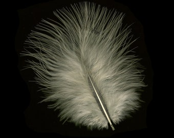 Turkey Feathers, Eggshell Loose Turkey Marabou Feathers, Short and Soft Fluffy Down, Craft and Fly Fishing Supply Feathers ZUCKER®