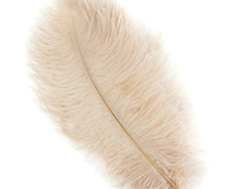 "Ostrich Feathers 13-16"" BEIGE 1 PIECE For Feather Centerpieces, Party Decor, Millinery, Carnival, Fashion & Costume ZUCKER®"