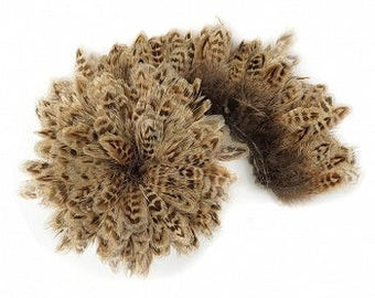 1 YARD NATURAL Ringneck Pheasant Plumage - For Millinery, Jewelry Making, Carnival & Cultural Arts Design ZUCKER®