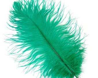 """EMERALD Bulk 13-16"""" Ostrich Feathers 1/4LB - For Feather Centerpieces,Party Decor,Millinery,Carnival,Fashion and Costume Design ZUCKER®"""