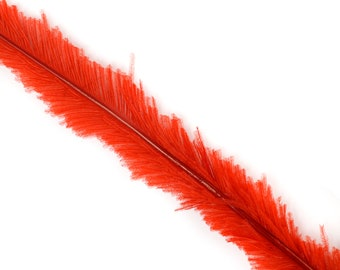 "Ostrich Nandu Feathers, Red Ostrich Feather Nandus 13-24"", Wholesale Carnival & Costume Feathers ZUCKER®"