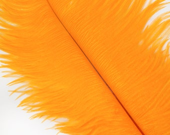 """MANGO 25 Ostrich Feathers 17""""- 20"""" - 25pc/pkg - Perfect for Feather Centerpieces,Party Decor,Millinery & Carnival Costumes ZUCKER®"""