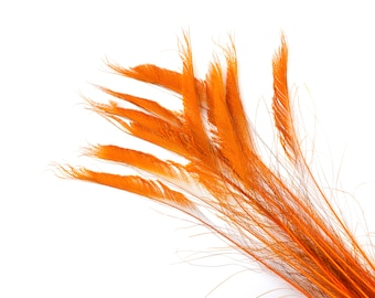 "Bleach Dyed Peacock Sword Feathers 10 to 100 Pieces 15-25"" ORANGE - Floral Decor, Millinery, Jewelry Design ZUCKER® Dyed & Sanitized in USA"