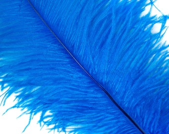 """DARK TURQUOISE 25 Ostrich Feathers 17""""- 20"""" - 25pc/pkg - Perfect for Feather Centerpieces,Party Decor,Millinery & Carnival Costumes ZUCKER®"""