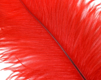 """RED 25 Ostrich Feathers 17""""- 20"""" - 25pc/pkg - Perfect for Feather Centerpieces,Party Decor,Millinery & Carnival Costumes ZUCKER®"""