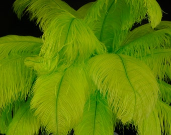 """Large Ostrich Feathers 17-25"""", 1 to 25 pieces, LIME Green Prime Ostrich Femina Wing Feathers, Carnival, Decor, Wedding Centerpieces ZUCKER®"""