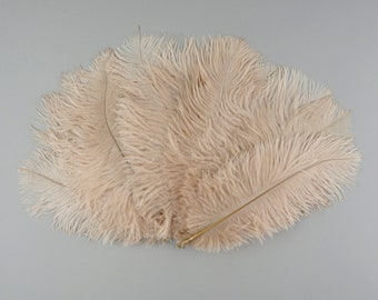 """BEIGE, Ostrich Drabs 9-12"""" , Centerpiece Floral Supplies, Carnival & Costume Feathers ZUCKER®Dyed and Sanitized USA"""